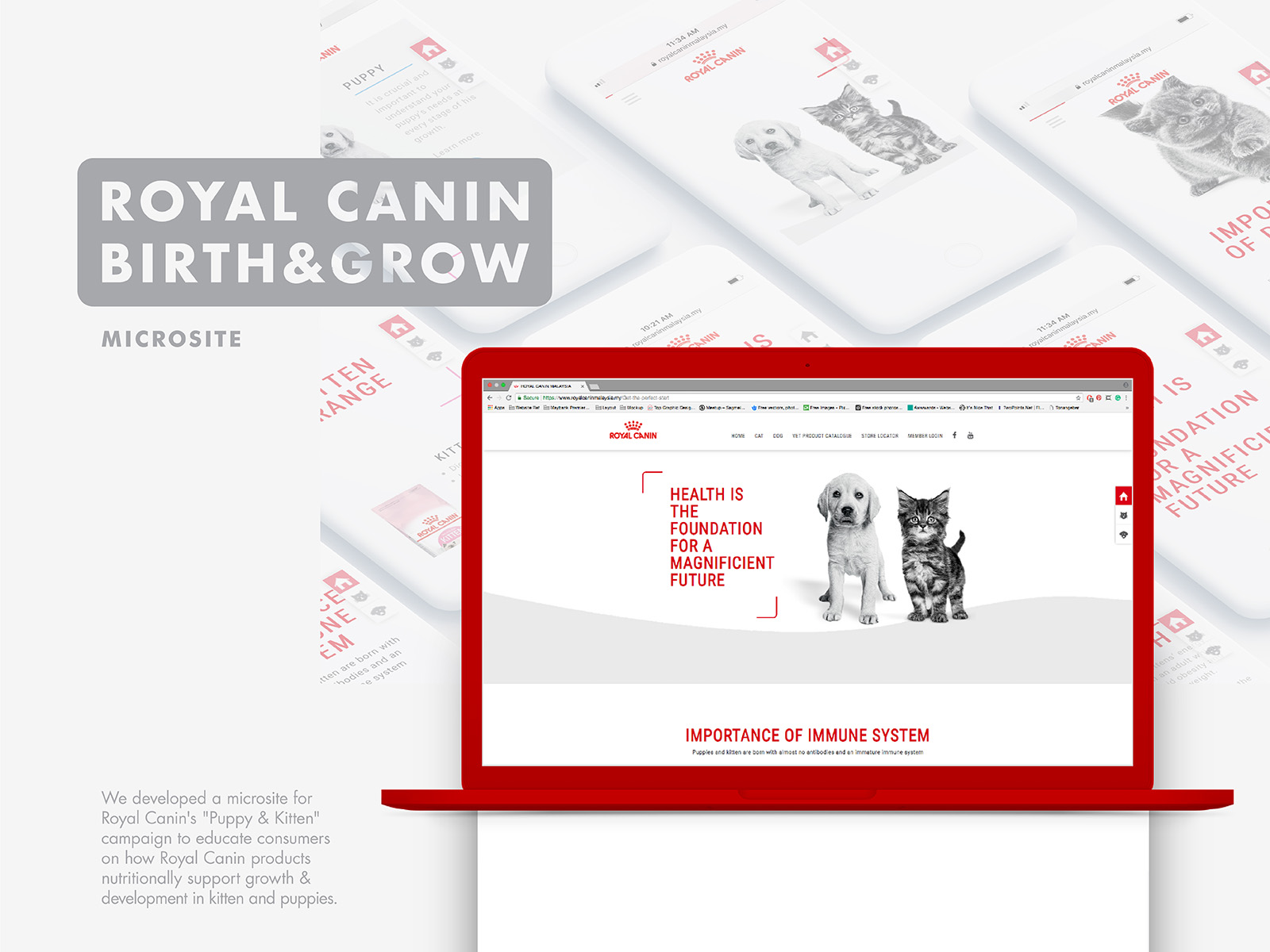 Royal Canin birth and growth campaign microsite landing page with description