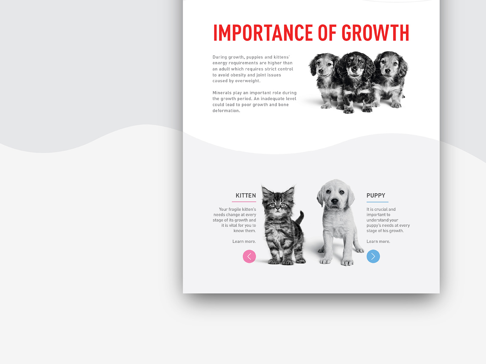 Royal Canin birth and growth campaign microsite landing page one scroll design highlights important factors of a kitten and puppy growth stage