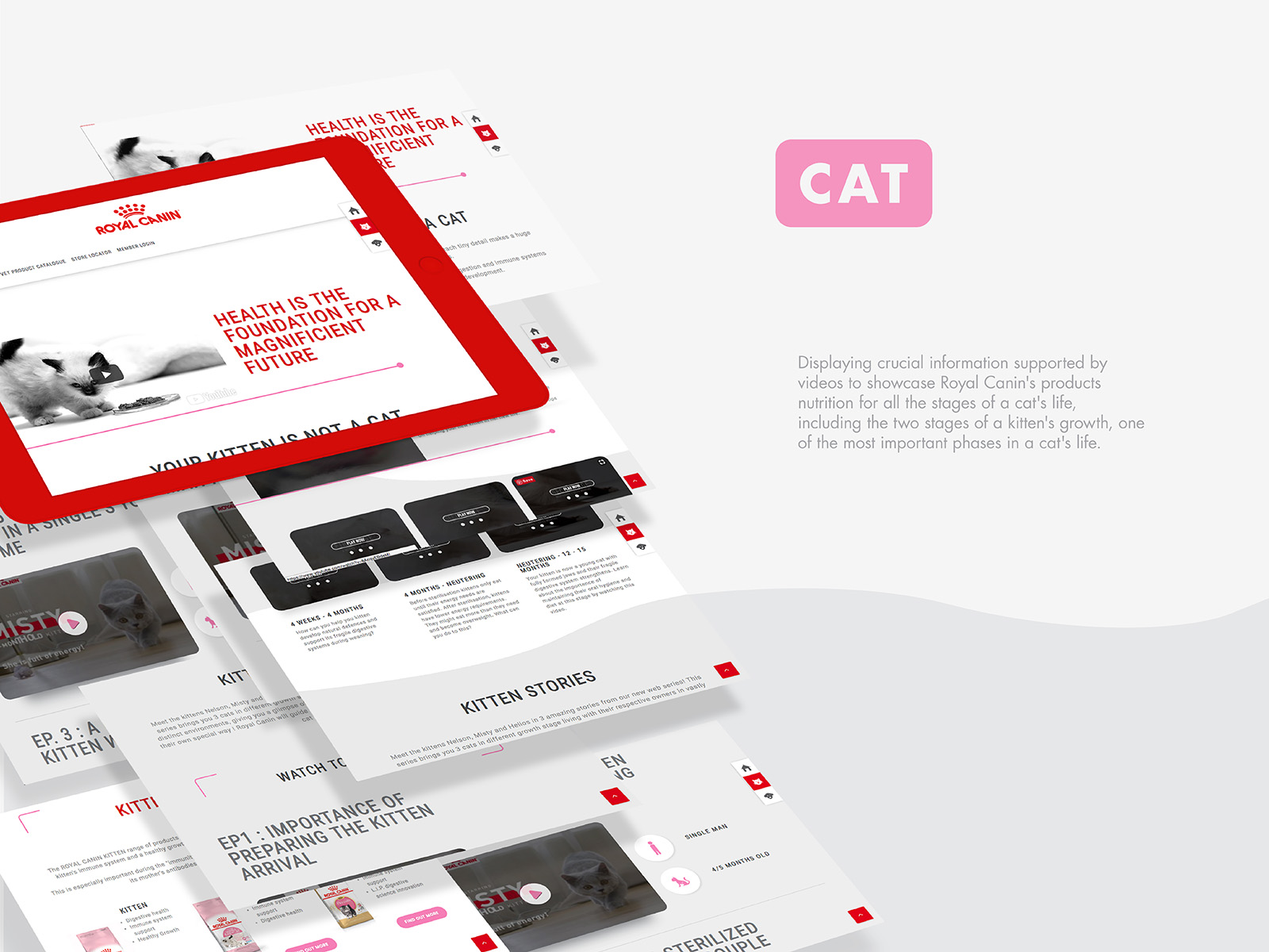 Royal Canin birth and growth campaign microsite kitten growth page and information
