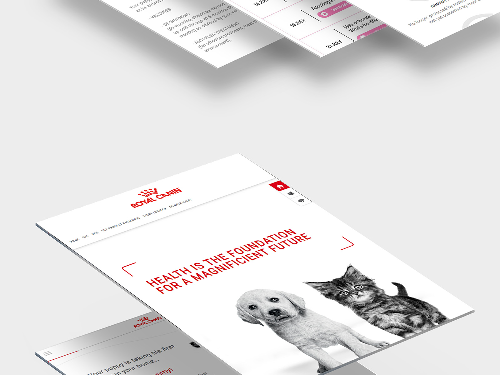 Royal Canin birth and growth campaign microsite other growth page views