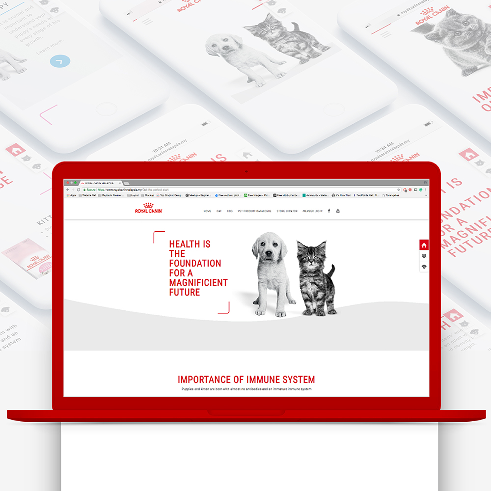 Royal Canin birth and growth campaign microsite landing page