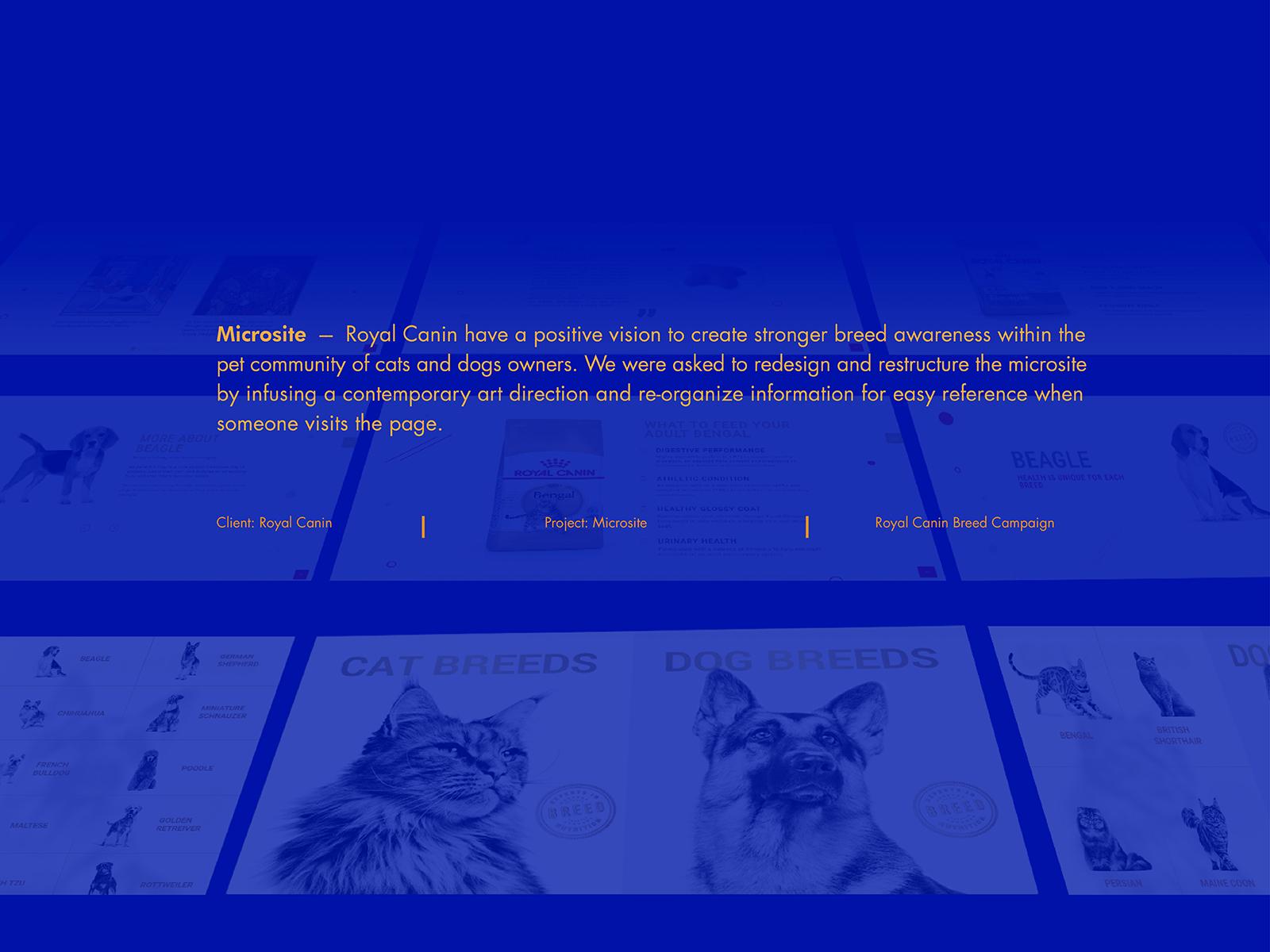 Royal Canin breed campaign microsite development and design brief