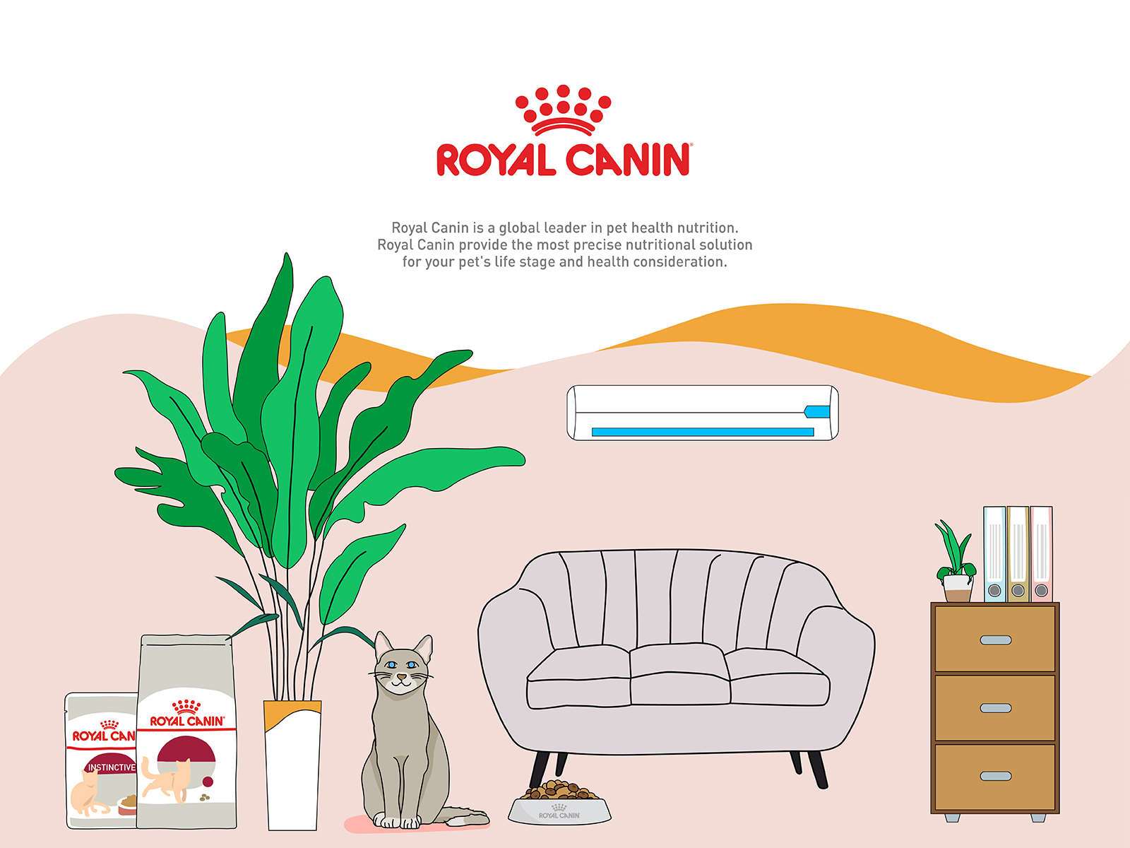 Royal Canin wet food promotional video illustration of cat by the sofa and plant with wet food product packaging
