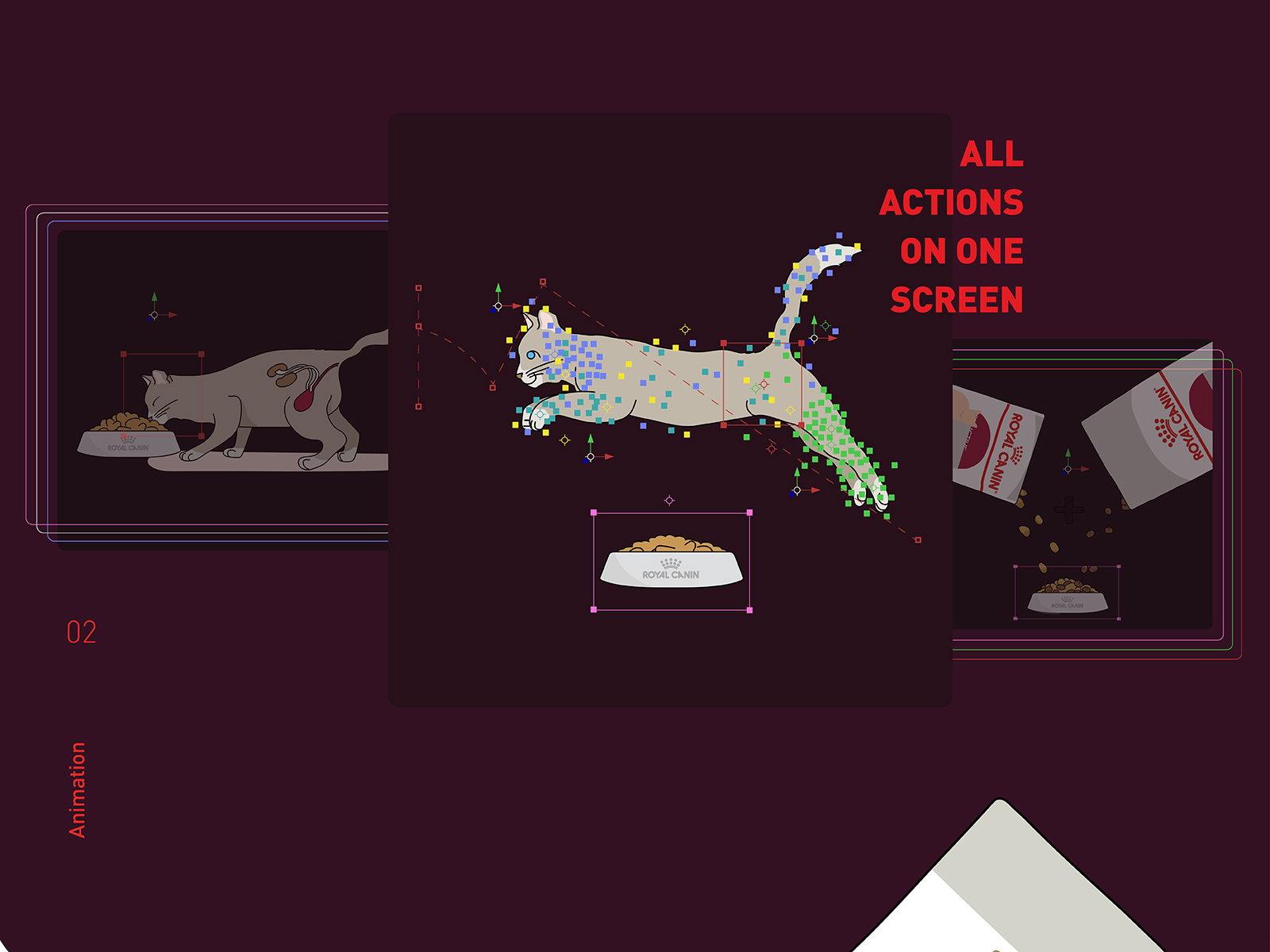 Royal Canin wet food promotional video illustration cat animation