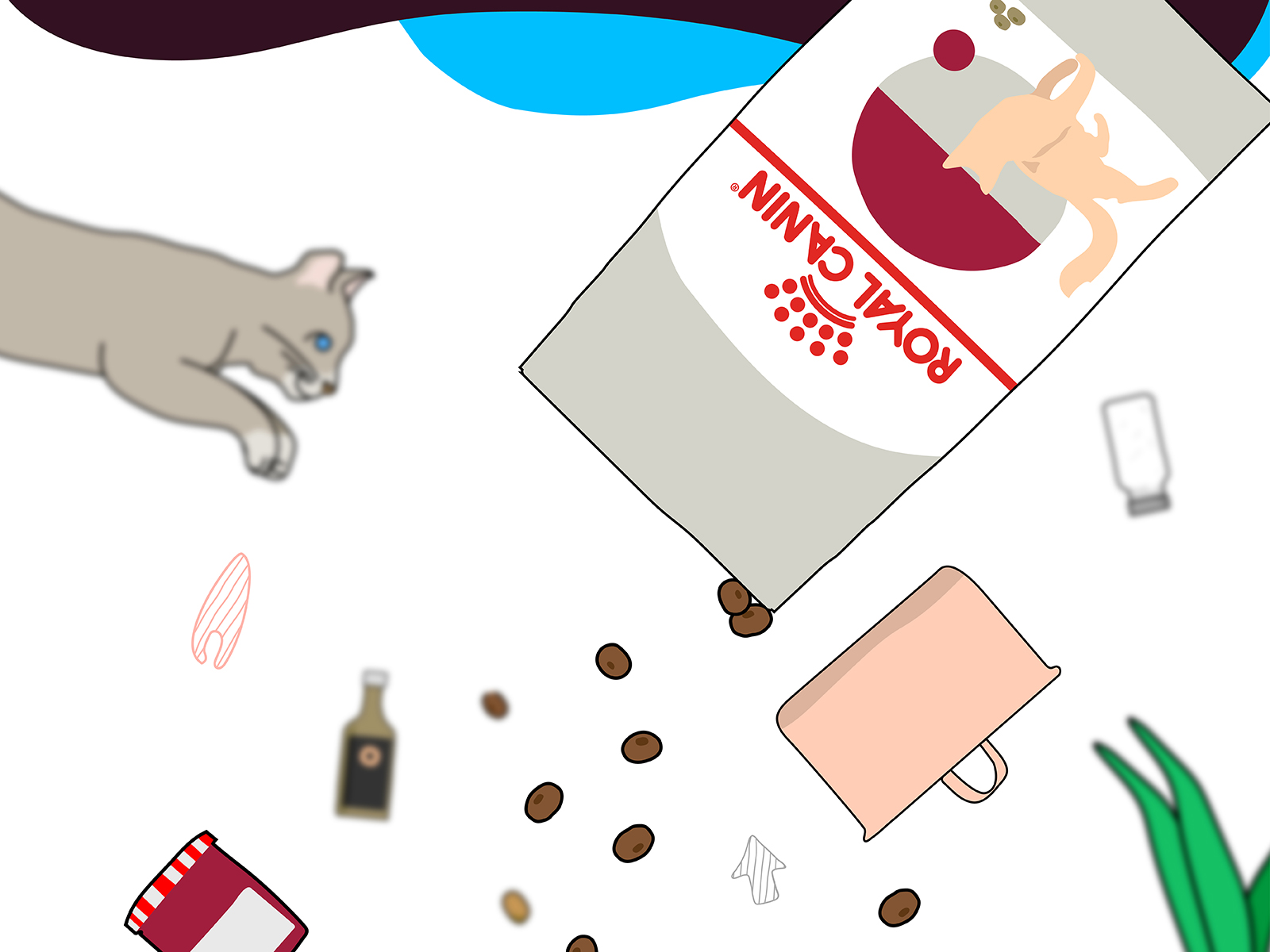 Royal Canin wet food promotional video illustration of cat, wet food product packaging, kitchen utensils and plant