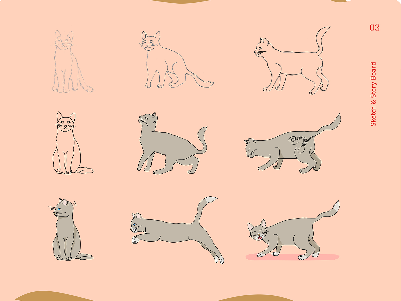 Royal Canin wet food promotional video cat character sketch and graphic illustration process