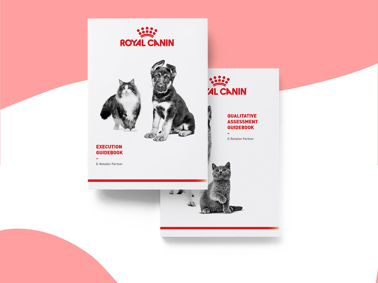 Royal Canin digital CI extension booklet cover design according to their other brand guide designs