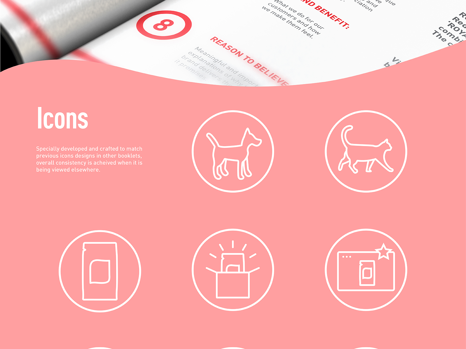 Royal Canin digital CI extension booklet icons development for dog, cat, product, packaging and online photo display