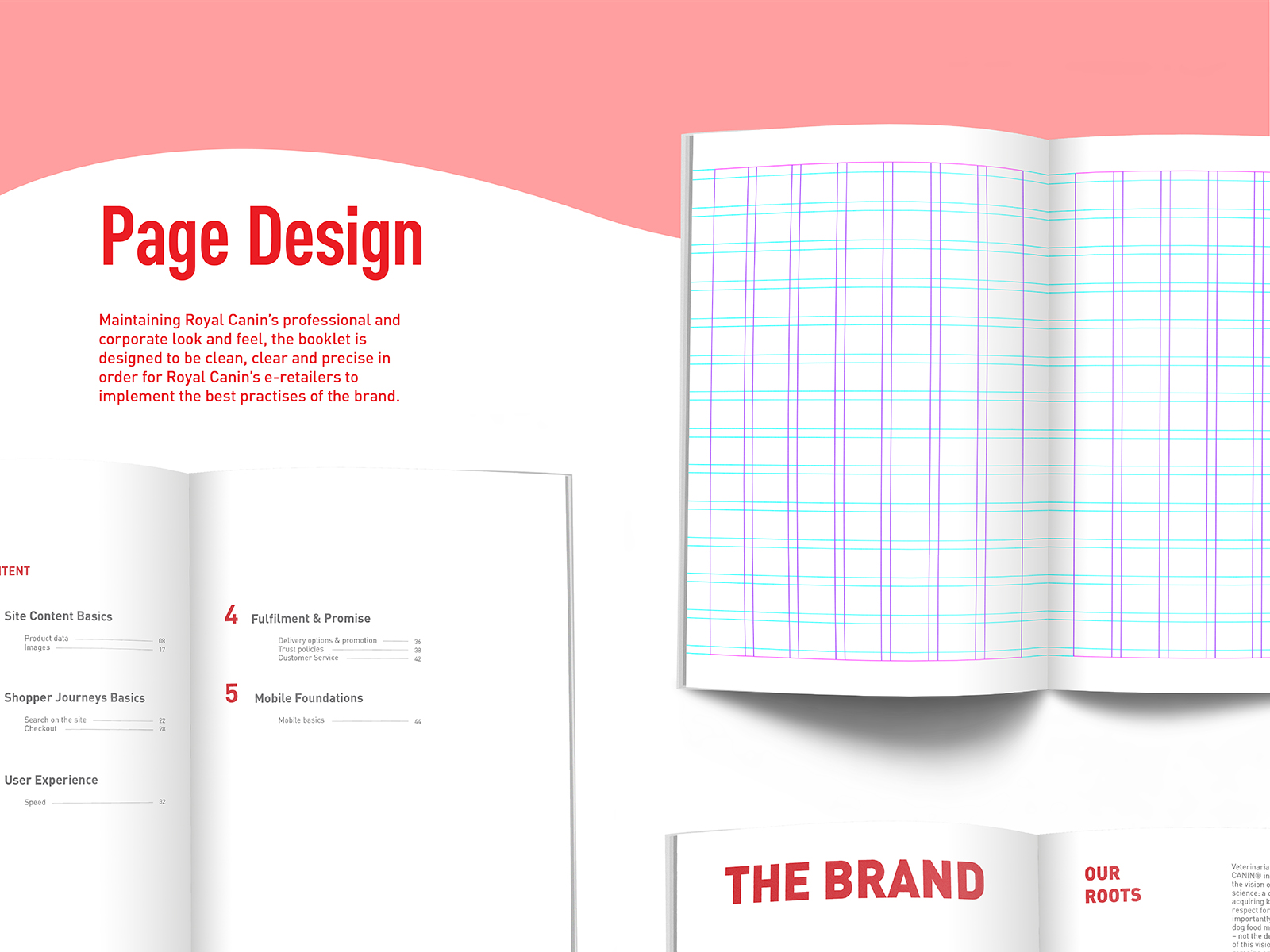 Royal Canin digital CI extension booklet inner page design with usage of grid system