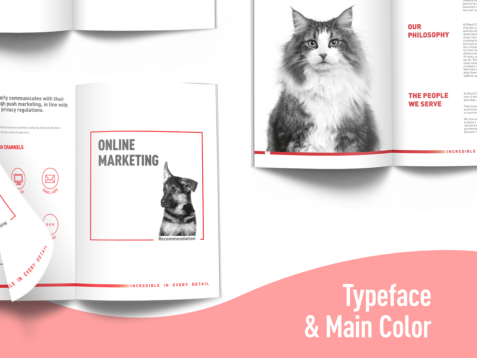 Royal Canin digital CI extension booklet inner pages design showing online marketing and their brand philosophy